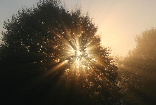 Die Sonne kommt!