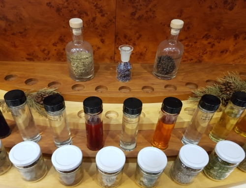 Visit to the natural materials laboratory